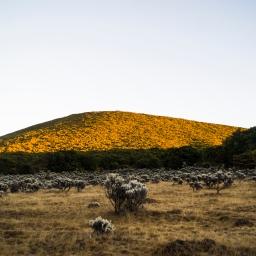 Puncak Gunung Gede yang (sempat) Tertunda